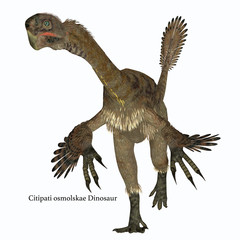 Citipati Female Dinosaur on White with Font