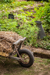 jardin potager organique légumes automne saison cabane jardinier