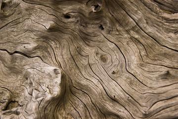 Foto auf Leinwand Steine drift wood