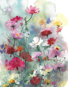 Wildflowers summer colorful flowers watercolor painting illustration isolated on white background