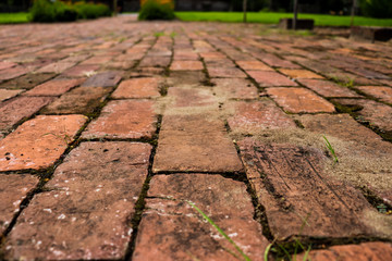 Close view of old vintage red brick pathway surrounded by green grass Fototapete