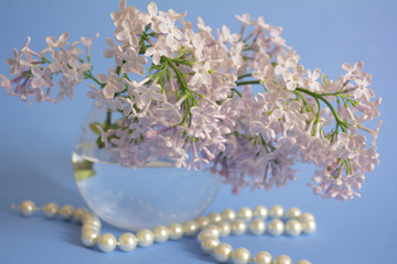 branch of lilac in a glass vase