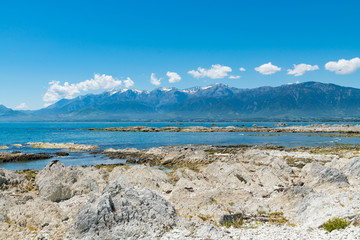 New Zealand white rock seacoast with mountain background, natural landscape