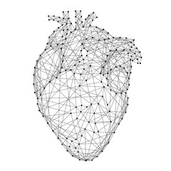 Heart anatomical human organ from abstract futuristic polygonal black lines and dots. Vector illustration.