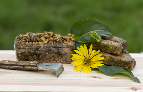Propolis collected and shaped into cubes on a wooden background. Bee Propolis is formed into cubes on a green background. The bee propolis on the table is shaped into cubes