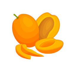 Ripe mango. Composition of a whole, half and chopped mango. Vector still life with exotic fruit.