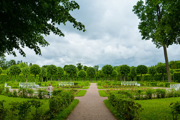 Summer garden in Saint Petersburg, landscape. Beautiful park with trimmed trees, people, green lawn, benches. Famous historical place. For posters, interior decoration, calendars, prints, design.