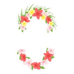 Hawaii face element carnival mask