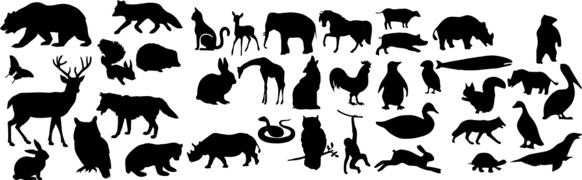 自然界の動物のシルエット