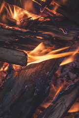 Burning wood in a campfire summer evening close-up