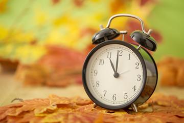 Autumn Black clock leaves