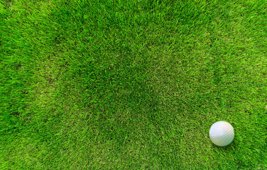 Golf Ball Lying on Green Grass View from Above