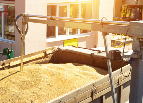 From a grain-laden lorry take grain for analysis, grain processing, analysis kernel