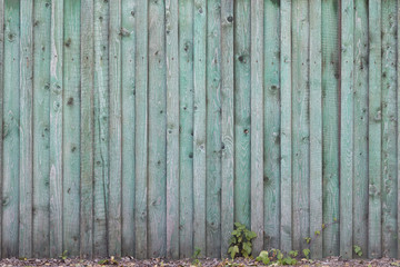 Part of the old fence of green wooden planks on the street. Aged wooden fence made of flat boards. Copy space.
