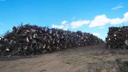 big deforestation in finland