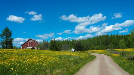 finnish house in beautiful landscape