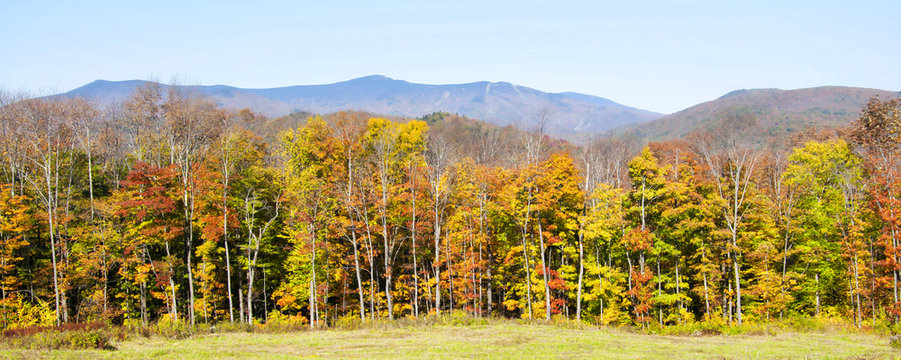 Autumn foliage in Vermont, New England, USA