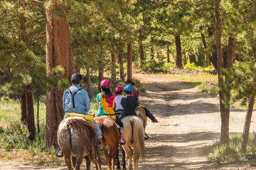 Family of four taking a horseback riding lesson in the woods in the Rocky Mountains, Colorado, in the summer