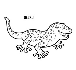 Coloring book, Gecko