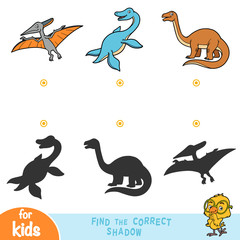 Find the correct shadow, education game. Set of reptiles