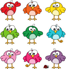 Set of colorful cute funny birds
