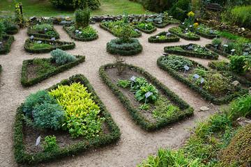 Kräutergarten , einzelne Beete