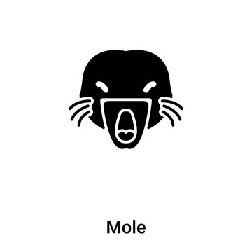 Mole icon vector isolated on white background, logo concept of Mole sign on transparent background, black filled symbol