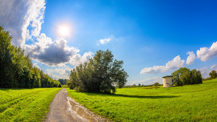 Summer landscape with a path through meadows and blue sky with bright sun in the background Wall mural