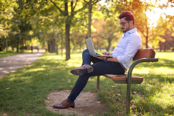 Handsome young businessman working on his laptop in the park Wall mural