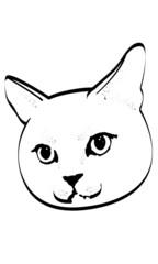 illustration of a cat
