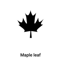 Maple leaf icon vector isolated on white background, logo concept of Maple leaf sign on transparent background, black filled symbol