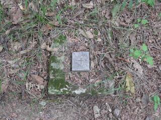 산길의 더하기 기호 모양이 새겨진 벽돌