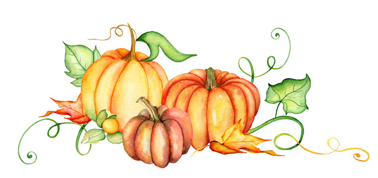 Watercolor pumpkin and autumn leaves. Harvest composition. Happy Thanksgiving day. Hand drawn illustration