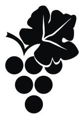 grape wine, black silhouette, vector icon, isolated illustration