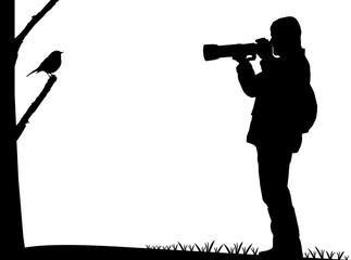 Birdwatcher photographs a bird silhouette