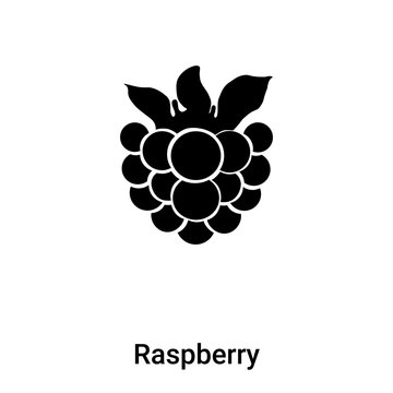 Raspberry icon vector isolated on white background, logo concept of Raspberry sign on transparent background, black filled symbol
