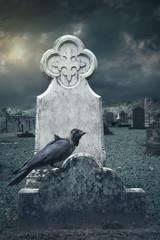 raven sitting on tombstone