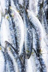 Fresh Portuguese sardines
