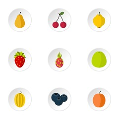 Orchard fruits icons set. Flat illustration of 9 orchard fruits vector icons for web