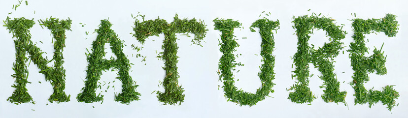 Word NATURAL made of green grass on white background. Save the earth concept