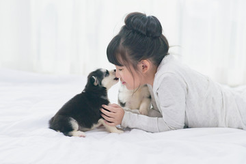 Little asian girl lying with  siberian husky puppy on bed