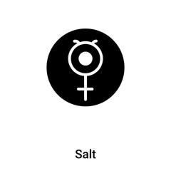 Salt icon vector isolated on white background, logo concept of Salt sign on transparent background, black filled symbol