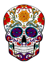 sugar skull, day of death vector illustration