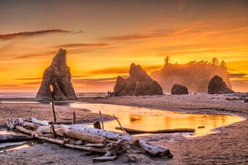 Fototapete - Olympic National Park, Washington, USA at Ruby Beach