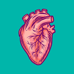 Human heart icon. Hand drawn illustration of human heart vector icon for web design