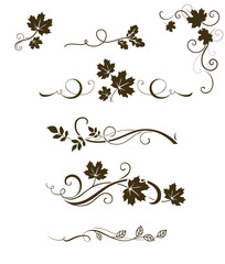 Vector set of autumn calligraphic elements, dividers and ornaments with maple, oak and rowan leaves for page decor and
