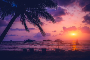 Beautiful tropical beach with palm trees. Sunrises and sunsets. Ocean
