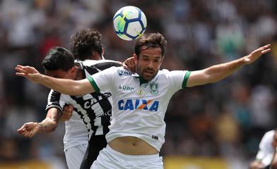 Brasileiro Championship - Botafogo v America Mineiro