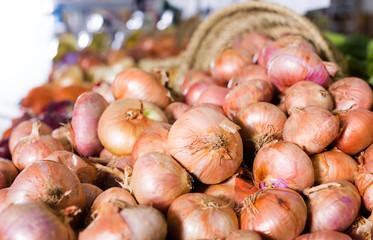 bulb onion on market counter
