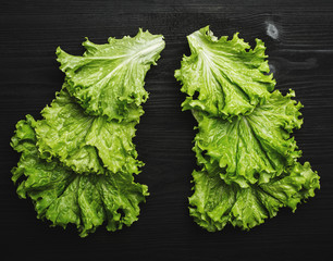 Fresh lettuce leaves on black wooden background. Top view, vegetable concept, flat lay